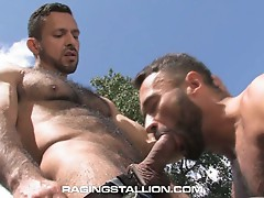 Stallion cock action for this sweet big dick