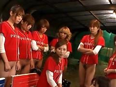 Baseball team gender