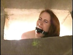 Lesbian bound, gagged and fucked
