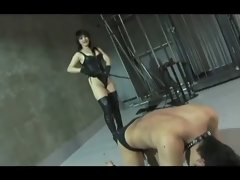 strict mistress whips her slave