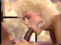 Porn star classic Jeanna Fine