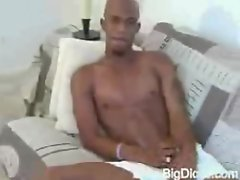 Huge Black Cock Stroke