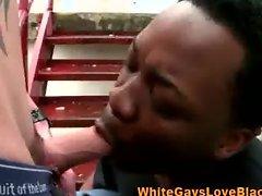 Interracial gangster gay sucks cock