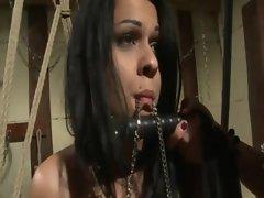 Lez domina makes her slave suck toy cock
