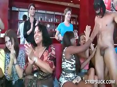 Sex party with bitches sucking stripper