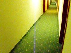 wank in a hotel gangway