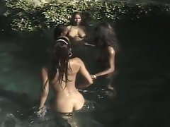 Ebony muff divers on the river and toying to each other