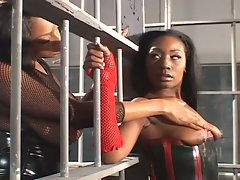 Busty ebony lesbian divas in sexy latex having fun