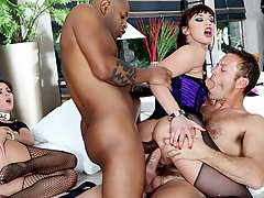 Rocco's double anal festival...