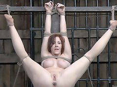 she is hung up on display for him and he has a hard cock ready to...