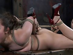 By coincidence, Sister Dee feels the same way. Being tied to a post...