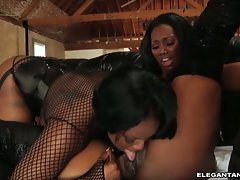 Jade Fire play dirty with black and white girls
