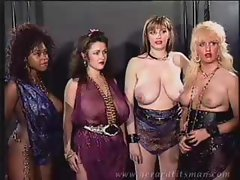 Stacey Owen Harem