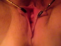 pussy clamps