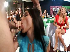 Crazy party sluts sucking cock