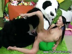 Cheeky toypanda being riden by horny teengirl