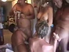 Experienced Swingers Orgy in Florida