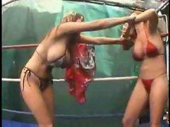 Catfight Sex