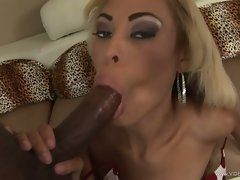 Angel Marie hot babe blow the dick of a hot guy