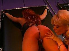 Lustful slave training