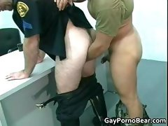 Gratis queer bears fucks and sucks rigid part3
