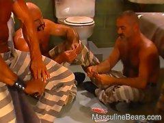 Gay bears orgy in prison