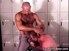 Gratis homo bears fucked and sucked part5