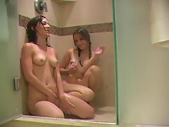 Wet young chicks in shower toy