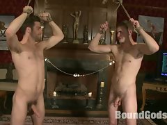 Tommy Defendi and Christian Wilde shower tied up DJ with loads hot...