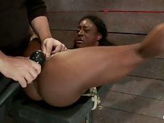 Beautiful ebony Ashley Star fights against her bondage and Matt in...