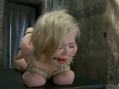 Katie Kox and her massive boobage are bound, tickled, caned and made...