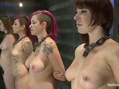 Four girls fucking, sucking, and explosive sybian orgasms to prove...