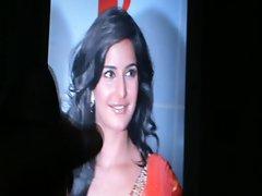 tribute to indian actress-katrina