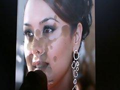 tribute to preity zinta-indian actress